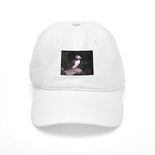 Puffin on the Rocks Baseball Baseball Cap