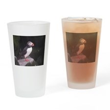 Puffin on the Rocks Drinking Glass