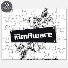 iAmAware Puzzle