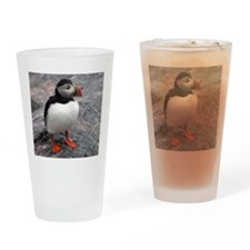 Lone Puffin Drinking Glass