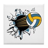 Volleyball Drink Coasters
