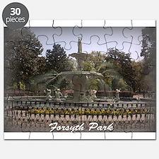 Forsyth Park Fountain Puzzle