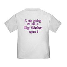 I have a secret-again Toddler T-Shirt