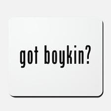 GOT BOYKIN Mousepad