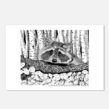 Raccoon Pen & Ink Postcards (Pkg of 8)