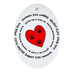 VAS awareness Oval Ornament