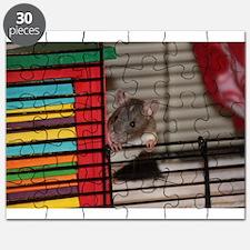 Domestic Baby Fancy Rat Puzzle
