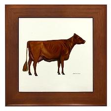 Shorthorn dairy cow Framed Tile