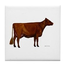 Shorthorn dairy cow Tile Coaster