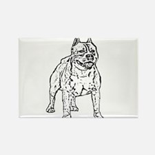 Pitbull Rectangle Magnet (10 pack)