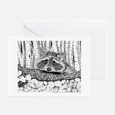 Raccoon Pen & Ink Greeting Cards (10pk)