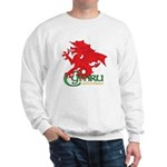 Cymru Draig Sweatshirt