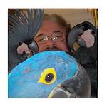Hyacinth Macaw and Palm Cockatoos
