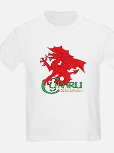 Cymru T-Shirt