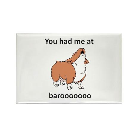 Baroo Rectangle Magnet