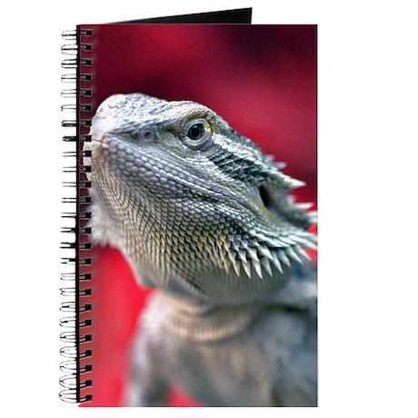 Dragon Head Journal