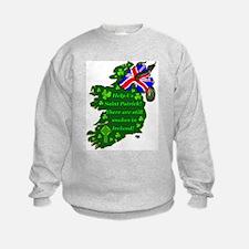 Snakes in Ireland Sweatshirt