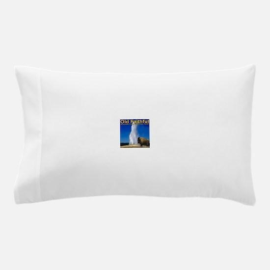 Cute Geyser Pillow Case