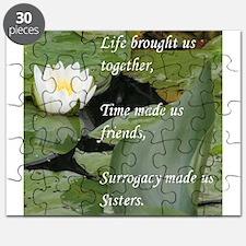 Ivf Puzzle