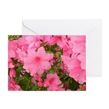 Pink Flowering Azalea Greeting Card