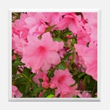 Pink Flowering Azalea Tile Coaster