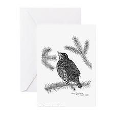 Robin Pen & Ink Greeting Cards (10pg)