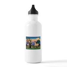 St. Francis & Buckskin horse Water Bottle
