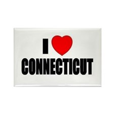 Cute Connecticut huskies Rectangle Magnet