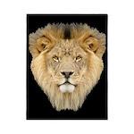 African Lion Twin Duvet