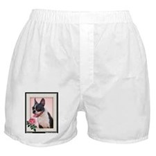 Framed Boston with Rose Boxer Shorts