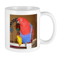 Eclectus Mug