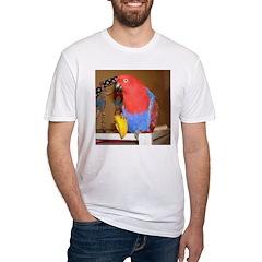 Eclectus Shirt