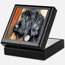 Black Labradoodle Ralph Keepsake Box