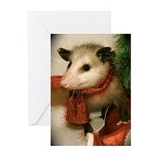 Possum with Scarf Cards (Pk of 10)