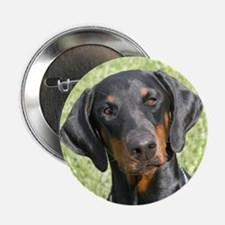 Doberman Button