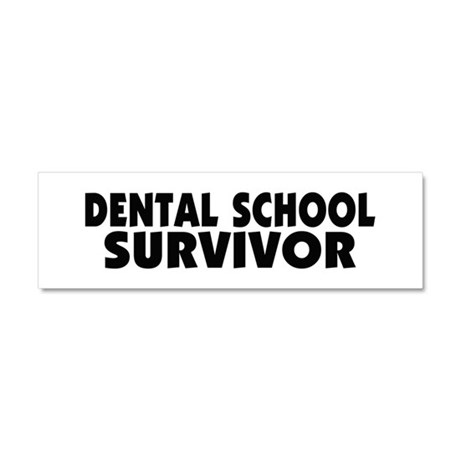 Dental School Survivor Car Magnet 10 x 3