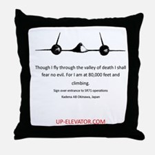 Funny Fly Throw Pillow