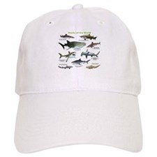 Sharks of the World Baseball Baseball Cap