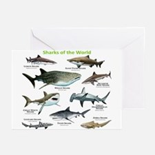 Sharks of the World Greeting Cards (Pk of 10)