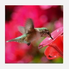 Hummingbird 3230 - Tile Coaster