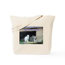 Cute Stray cats Tote Bag