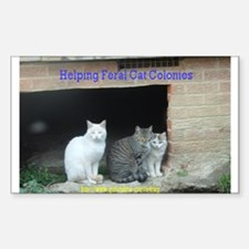 Cute Feral cats Decal
