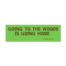 Muir's Woods Car Magnet 10 x 3