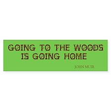 Muir's Woods Bumper Bumper Sticker
