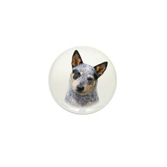 Australian Cattle Dog Mini Button (100 pack)