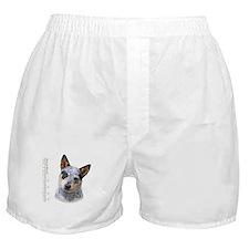 Australian Cattle Dog Boxer Shorts