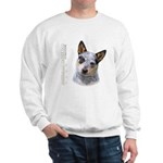 Australian Cattle Dog Sweatshirt