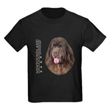 Brown Newfoundland T