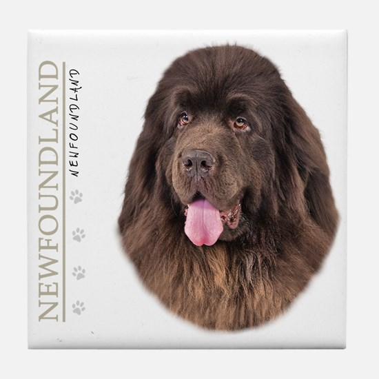 Brown Newfoundland Tile Coaster