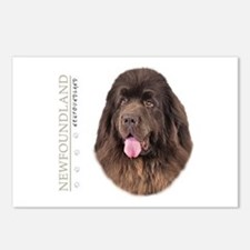 Brown Newfoundland Postcards (Package of 8)